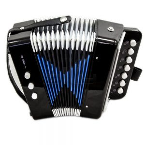 accordion-black-button-from-sky