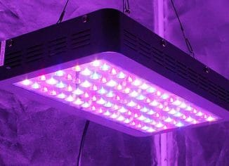 Top 10 Best Grow Lamps Reviewed In 2017